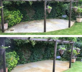 Softwashing Patio Cleaning Croydon Purley
