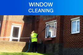 Window Cleaning Purley London