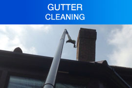 Gutter Cleaning Purley London