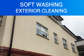 Softwashing Purley London
